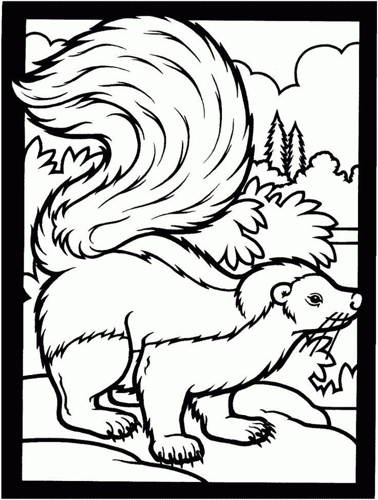 644 best forestwoodland animals images on Pinterest