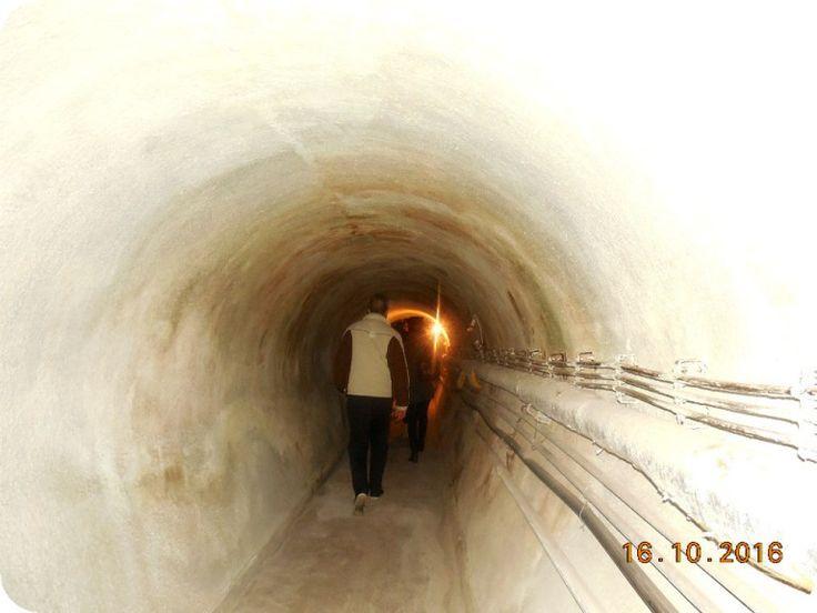 Am vazut luminita de la capatul tunelului. Tunelul duce spre Vinoteca Banu Maracine