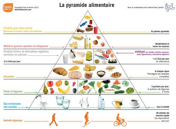 Assez Les 25 meilleures idées de la catégorie Saine pyramide alimentaire  VP59