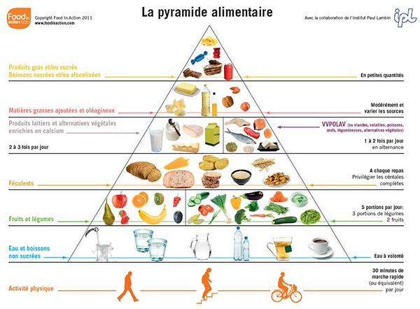 pyramide-alimentaire                                                       …