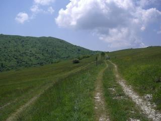 Walking to Carpegna...