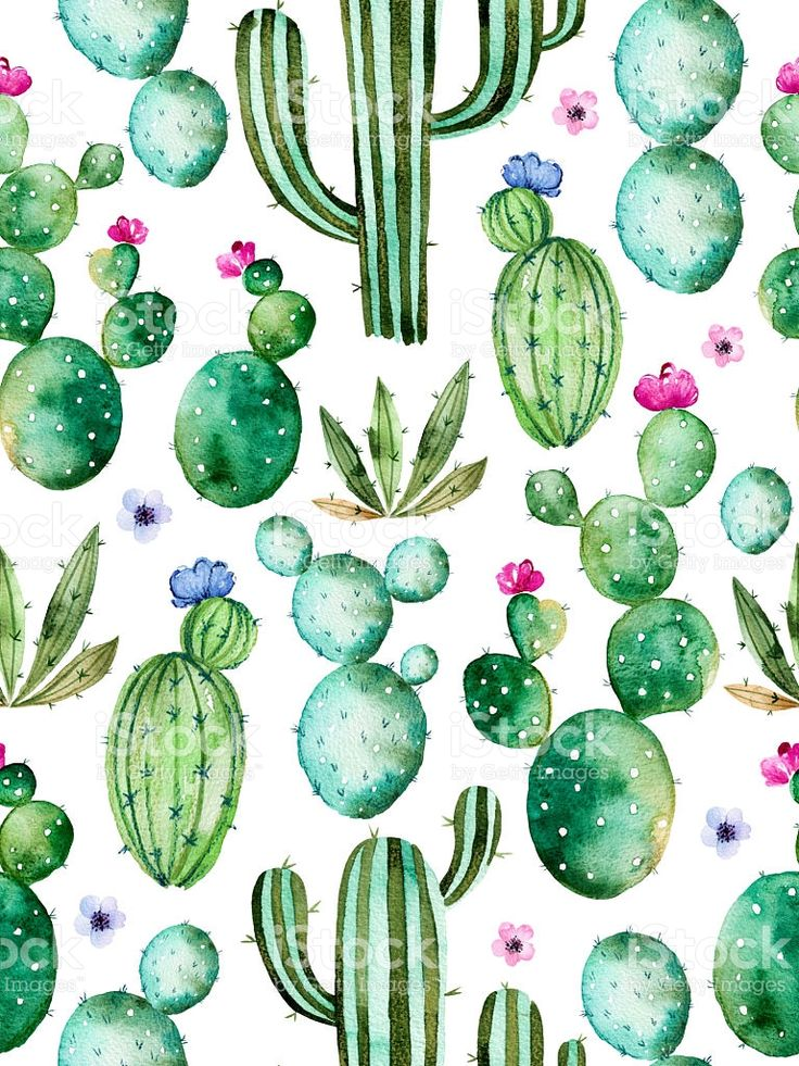 Seamless pattern with high quality hand painted watercolor cactus…