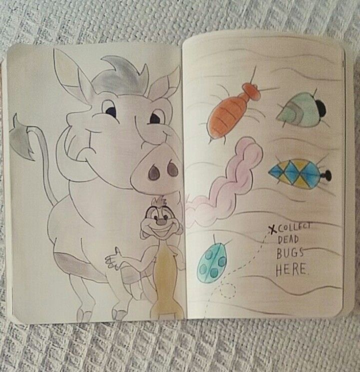 Collect dead bugs here- wreck this journal. Disney's The Lion King.