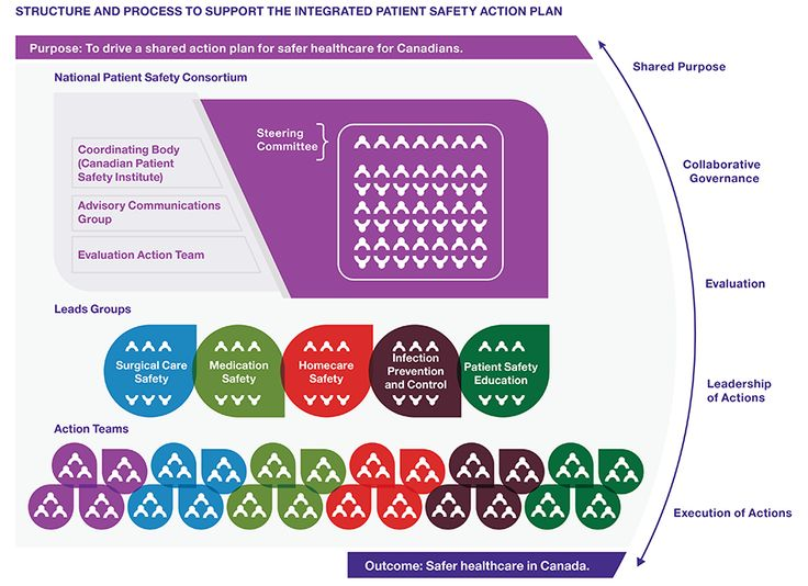 The of the Consortium and its Integrated Patient