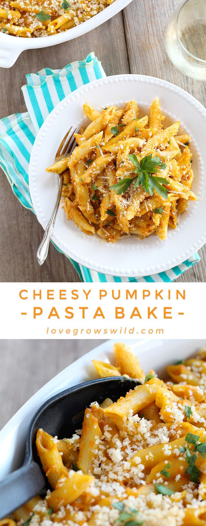 Pumpkin isn't just for dessert anymore! This Cheesy Pumpkin Pasta Bake is super creamy and SO delicious! | LoveGrowsWild.com