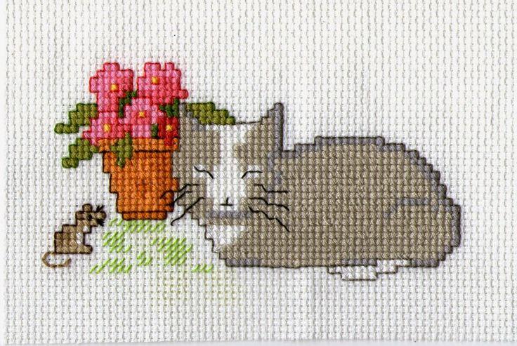 maggie@arfryn: Cat Nap