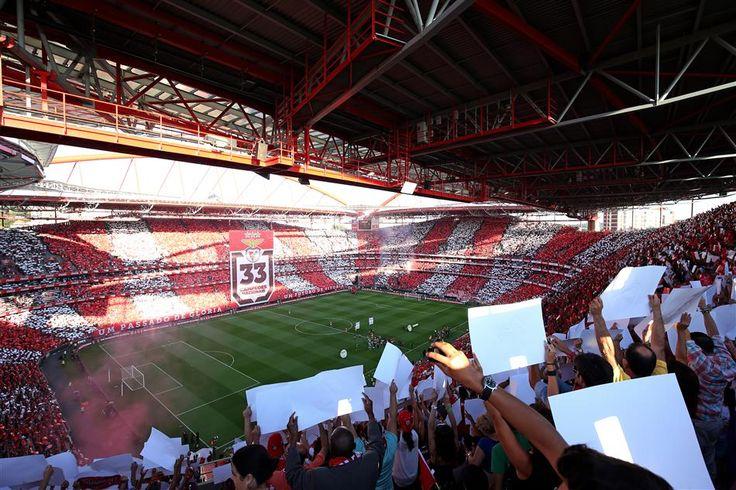 SL Benfica x Boavista FC, domingo, 8 de Novembro, às 16h.