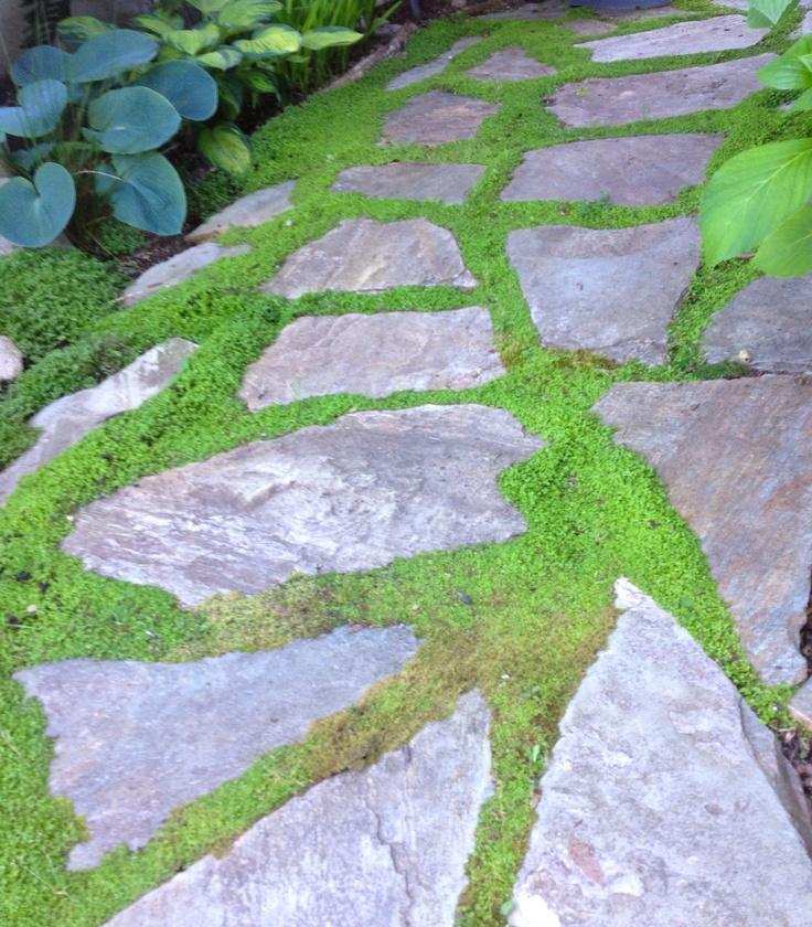 25 beste idee n over stenen paden op pinterest stenen pad rotspad en grind loopbrug - Amenager zijn caravan ...