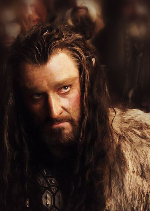 thorin oakenshield character analysis in the An unexpected character analysis: bilbo baggins  but what stings most of all it is the perpetual disdain of thorin oakenshield  film analysis, lord of the.