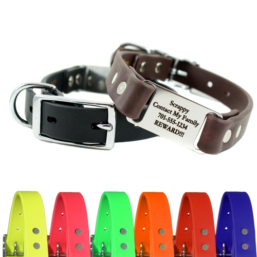 Waterproof/Smell Proof dog collar. Just bought one for Charlie! Love how the ID tag is built into the collar!