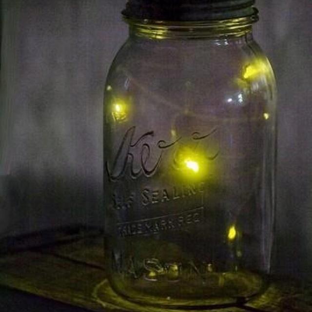236 best fireflies images on pinterest artwork display canon 236 best fireflies images on pinterest artwork display canon and fireflies fandeluxe Document