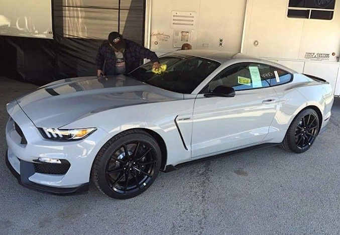 shelby gt avalanche grey     ford mustang mustang   ideas