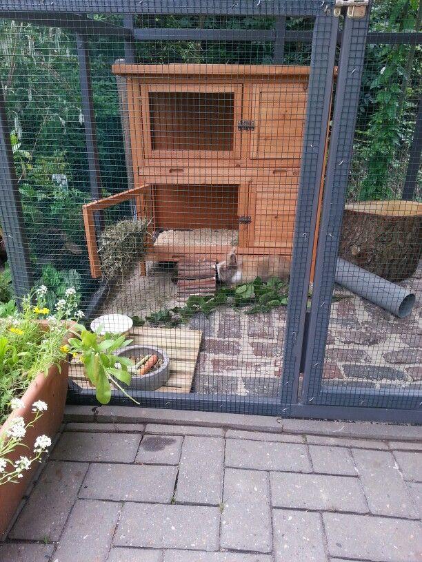 ber ideen zu kaninchengehege selber bauen auf pinterest kaninchen. Black Bedroom Furniture Sets. Home Design Ideas
