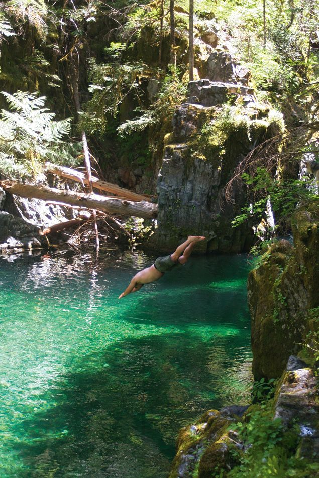 OPAL CREEK epitomizes Oregon in the buff: an ancient Eden teeming with deep green pools, splashing waterfalls, and trees the size of buildings. 3 mile hike to the campsites.