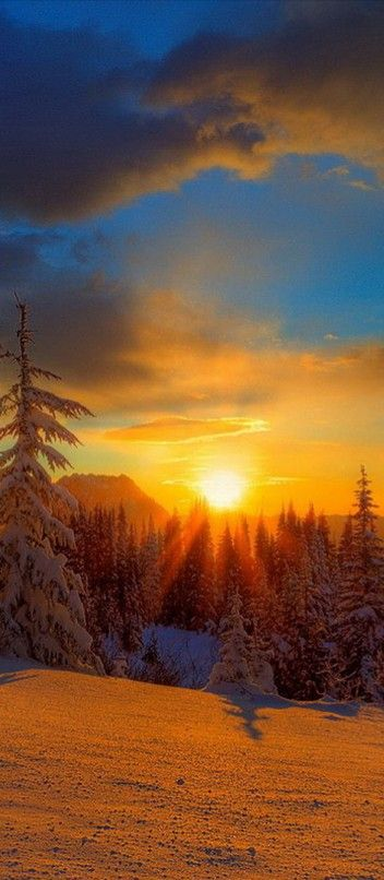 Mt. Rainier sunset in Washington • photo: Kevin McNeal on Wordpress