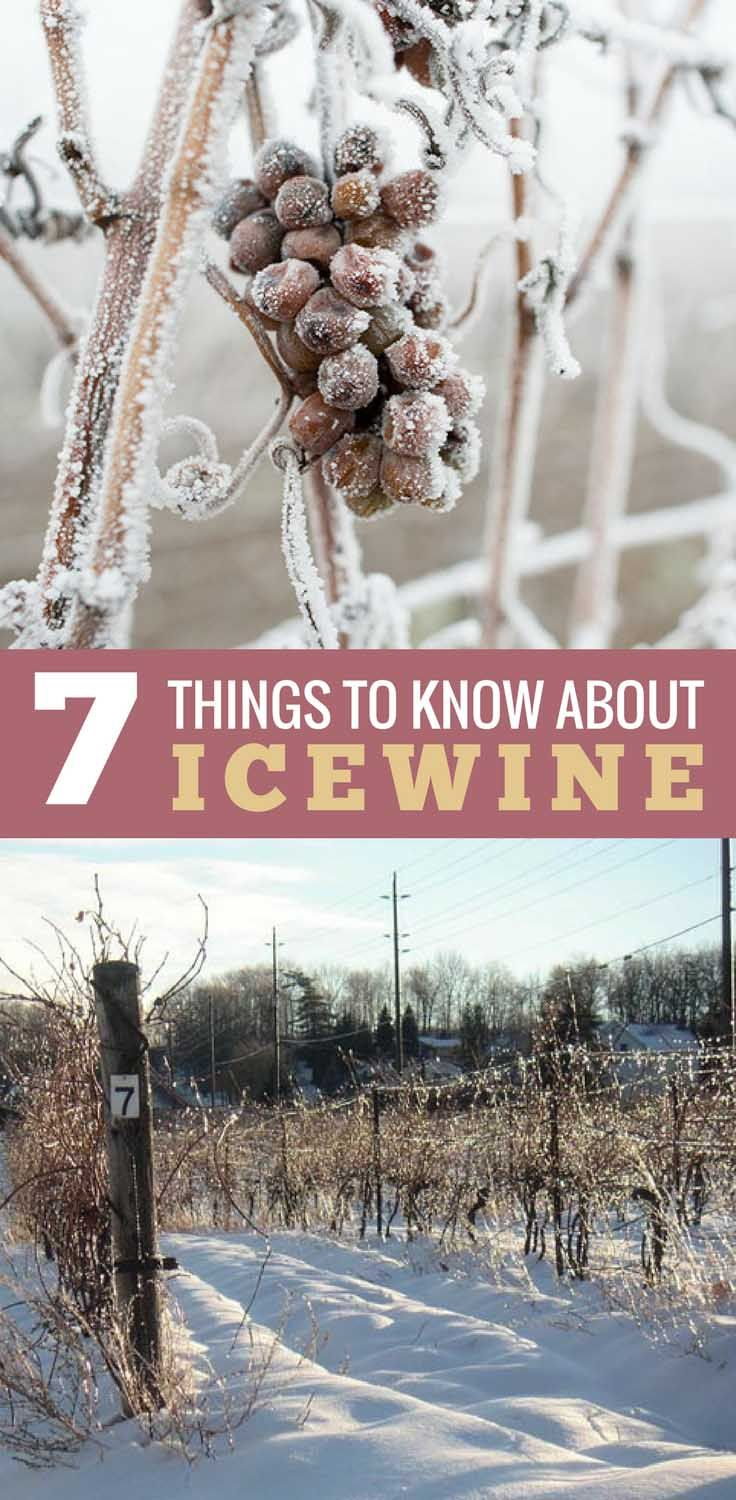 7 Things to Know about Icewine including how to store, how to pour and food pairings