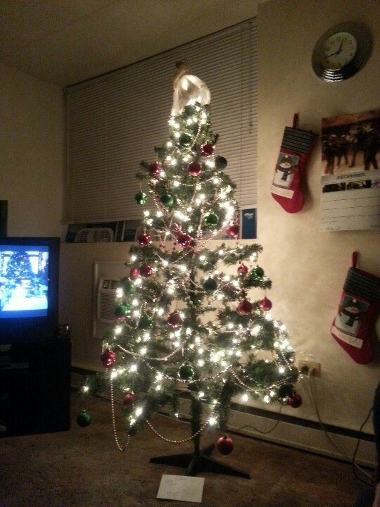 Tree with stockings at night.