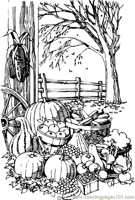 fall coloring pages printable coloring pages fall harvest natural world autumn - Free Fall Coloring Pages Print