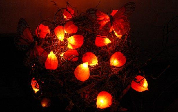 Verse lampionnetjes geoogst, sneetje ingemaakt, kerstlampje erin. en voila, Herfst!