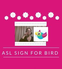 Baby Sign Language Video Dictionary: ASL Sign Bird