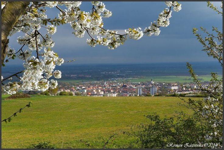 Spring in the Czech Republic. Litoměřice - my hometown