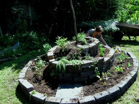 the final part of the awesome spiral herb garden, filling it with herb plants