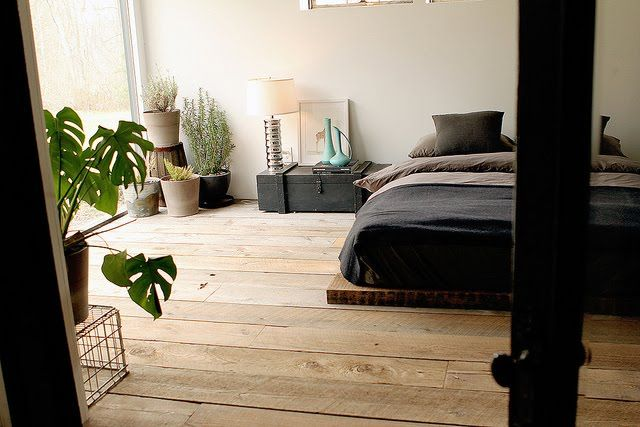 Bedroom with raw wood floors, natural light, and house plants