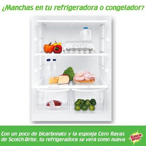 Para eliminar manchas dentro de tu refrigerador o - Toalla con respaldo ...