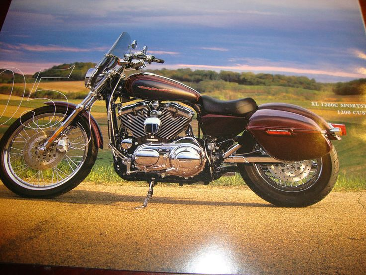 Harley Davidson 2005 XL1200C SPORTSTER CUSTOM Poster 11x8.5 Poster. Frame it.