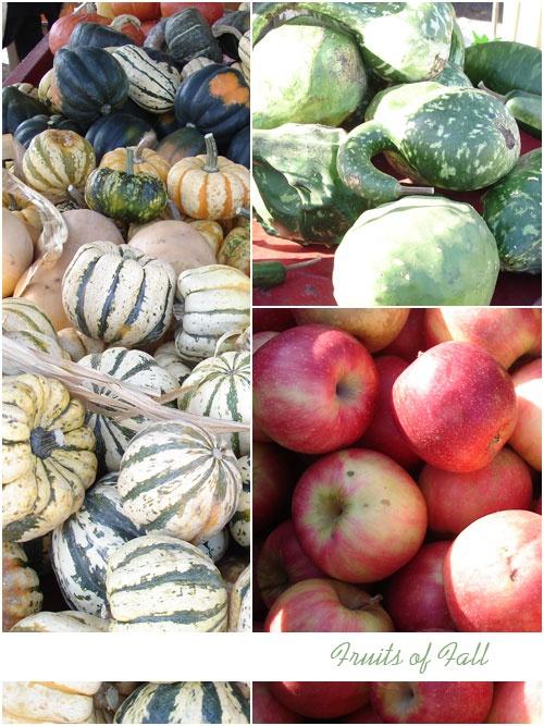 Fruits of fall from Deerfield farmers market