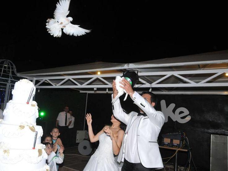 Şeke Bahçe Bursa Kır Düğün Mekanları, Kırda Düğün  Bursa Kır Düğün Mekanları, Kırda Düğün, Nişan ve kır nikahları ile mutlu çiftlerimize, yeni çiftler eklemekten gurur duyuyor, bir de düğün organizasyonlarına ev sahipliği yaptığımız değerli misafirlerimizin çocuklarının doğum günlerini, sünnet törenlerini ve mezuniyet baloları gibi özel organizasyonlarına ev sahipliği yapmaya devam etmekteyiz.