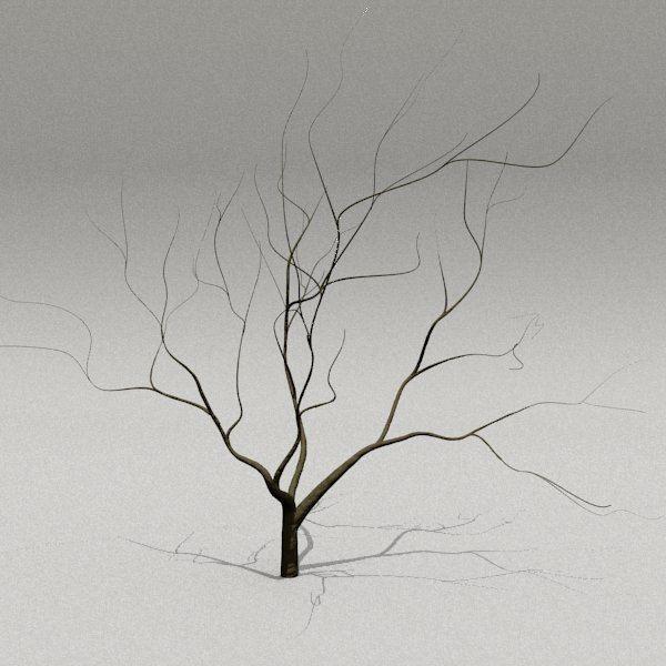 Tree By 3d Monger Bare Tree 3d Model Model