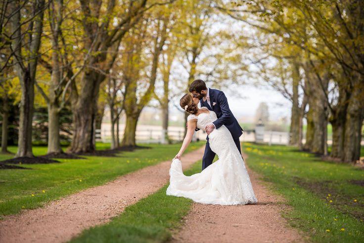 Belcroft Estates Wedding   Blog - David & Sherry Photography