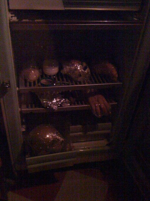Jeffrey Dahmer Head in Fridge | the door to Sharon Tate's house