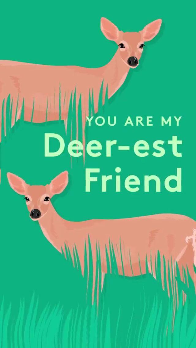 #deer #friend #pun