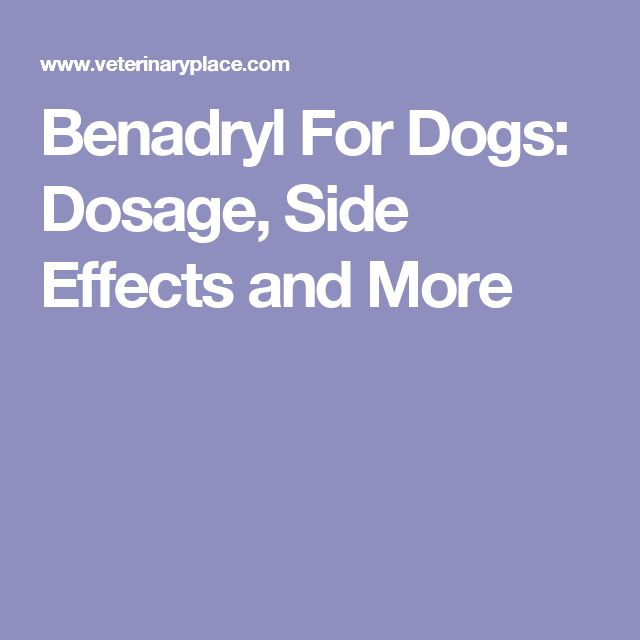 Can You Give Your Dog Childrens Benadryl