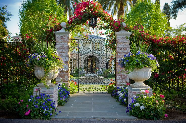 11 Best Shade Perennials Images On Pinterest Landscaping Beautiful Gardens And Gardening