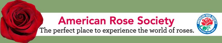 Rose fertilization regimen.  American Rose Society http://www.rose.org/the-house-fertilizer-program/