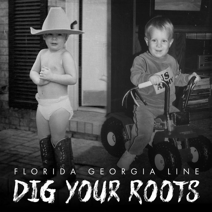 """Dig Your Roots"" album cover."