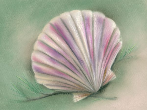 Blue SeaShell Scallop Abstract Watercolor Painting Art Print by Artist DJ Rogers