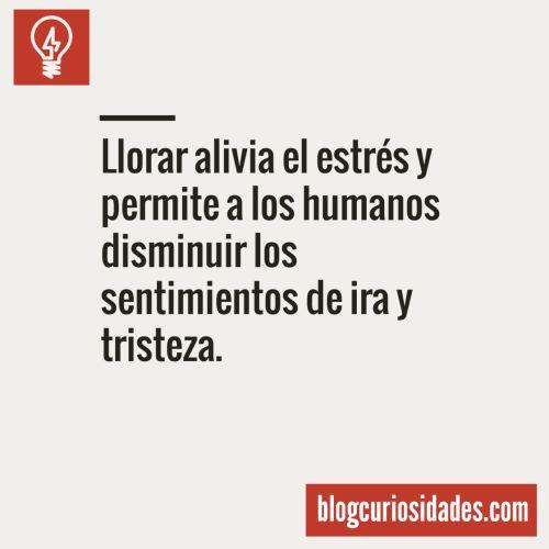 curiosidads:  Blog CuriosidadesFacebook || Twitter