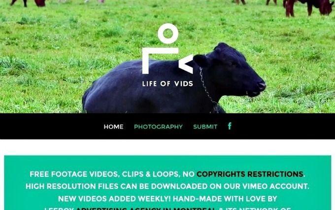 Educación en píldoras: Life Of Vids: banco de vídeos libres para usar en tus proyectos