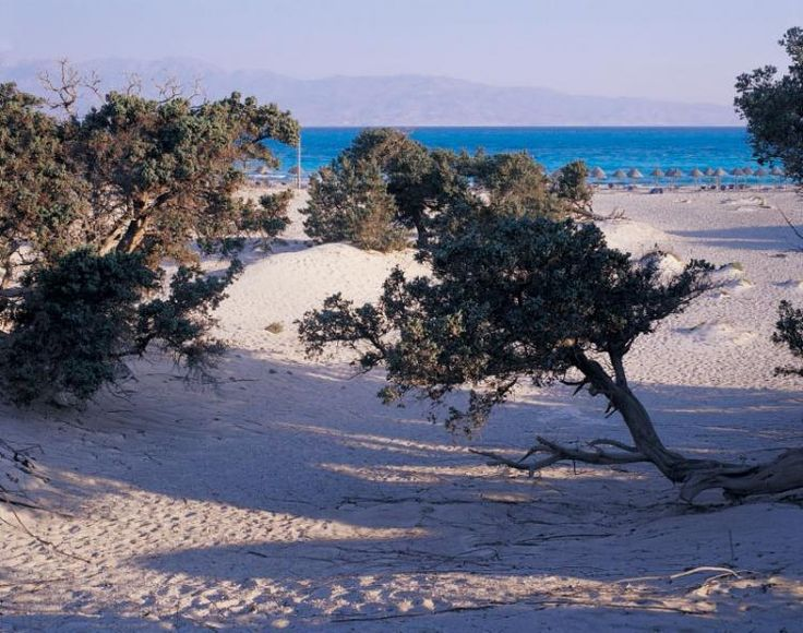 """Donkey Island"": off Ierapetra, Crete or Chrissi or Gaidouronisi island"