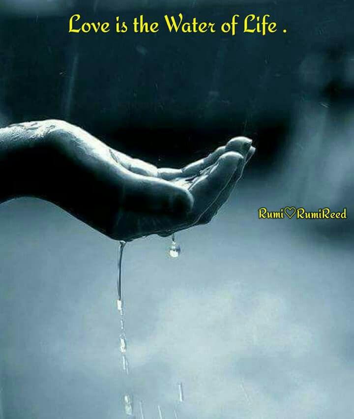 Pin By Sandhya Dwivedi On Quotes Rain Rain Drops Love Rain