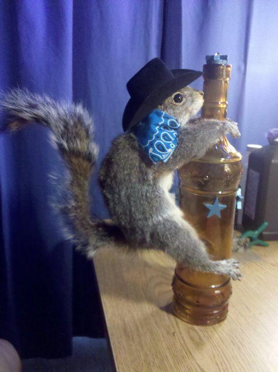 Decor: Taxidermy Squirrel Bottle Holder