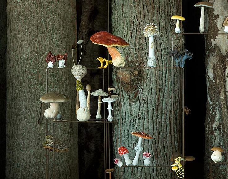 Wälderhaus in Hamburg, Ausstellung