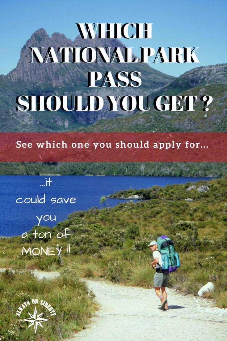 Which National Park Pass Should You Get Always On Liberty National Park Pass Acadia National Park Camping National Parks Trip