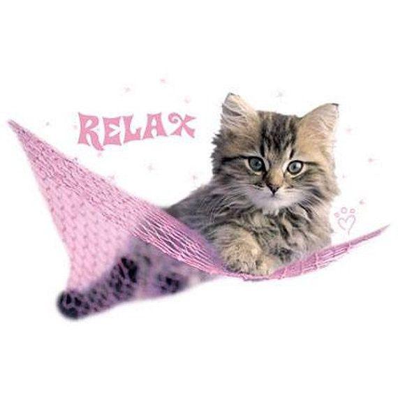 Minnie Relax Cat Kitten Image T Shirt New Womens Cut and Style T Shirt