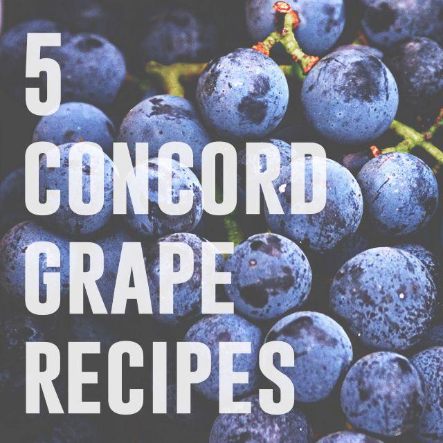 Concord Grape Syrup, Juice, jelly, tarts and sorbet recipes Kaylee Eylander DIY