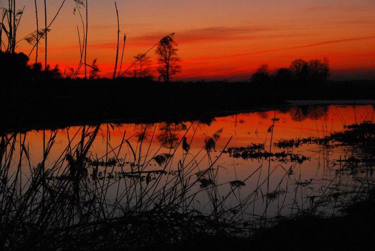 Kiermusy, Podlasie (POLAND) http://www.stanica-kiermusy.pl/pl/